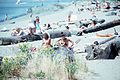 Seattle - Sunny day at the beach, 1980.jpg