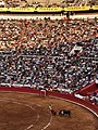 Sebastian Castella bullfighting.jpg