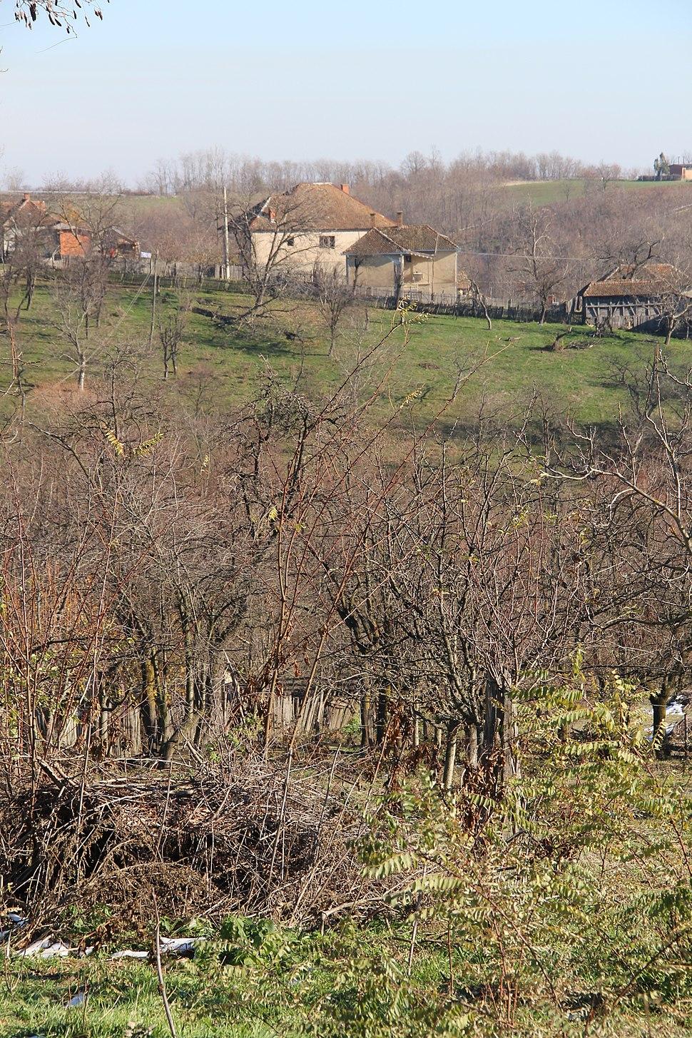 Selo Gola Glava - opština Valjevo - zapadna Srbija - panorama 8