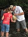 Service volunteer Jamie Cameron helping in the search for stream macroinvertebrates (5029746806).jpg