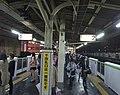 Shinokuboplatform-oct2014.jpg