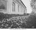 Side of the Alaska Building with flower bushes, Alaska-Yukon-Pacific-Exposition, Seattle, Washington, 1909 (AYP 1043).jpeg