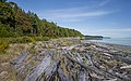Sidney Spit (part of Gulf Islands National Park Reserve), Sidney Island, British Columbia, Canada 13.jpg