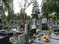 Siedlce Cmentarz Widok3 2012 micbor.JPG