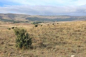 Sierra de Montes Claros desde Arévalo de la Sierra.jpg