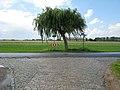 Sint-Laureins Casteleynstraat (2) - 288683 - onroerenderfgoed.jpg