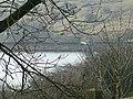 Small Reservoir near High Halstead - geograph.org.uk - 110910.jpg