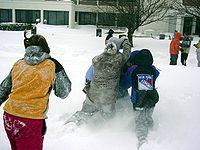 Snowball fight MSU.jpg