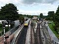 South Devon Railway 2018 1.jpg