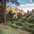 South Fork John Day Wild and Scenic River (36265609852).jpg