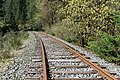 Southern Railway of Vancouver Island, Canada 04.jpg