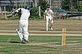 Southwater CC v. Chichester Priory Park CC at Southwater, West Sussex, England 004.jpg