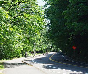 Terwilliger Boulevard - Terwilliger Boulevard at Duniway Park overlook