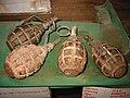 Soviet F1 hand grenades.jpg