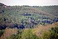 Spire of St. John's - panoramio.jpg