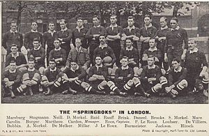 1906–07 South Africa rugby union tour of Europe - Image: Springboks 1906 team