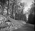 St. Albans, Roman city wall - geograph.org.uk - 2377970.jpg