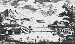 Sugar production in the Danish West Indies - A thriving sugar plantation in Saint Croix