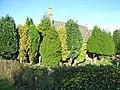 St Mary Magdalene Church, Gilsland - geograph.org.uk - 241591.jpg