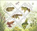 Stamp 2011 Amphibian.jpg