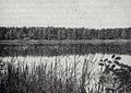 Staw Jan, Potasznia, 1948r.jpg