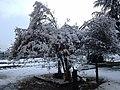 Stazione FFSS di Saluzzo dopo la neve - panoramio (2).jpg