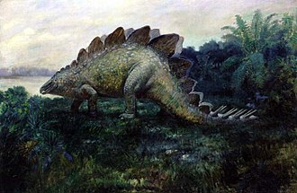 Stegosaurus - 1901 life restoration of S. ungulatus by Charles R. Knight with paired dorsal plates and eight tail spikes