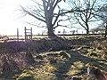 Stile and footbridge on the path to Rhoslan - geograph.org.uk - 1763305.jpg