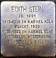 Stolperstein Köln, Edith Stein (Werthmannstaße 1).jpg