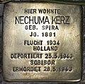 Stolperstein Stierstr 4 (Friedn) Nechuma Kerz.jpg