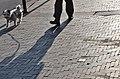 Stolperstein in Koekelberg (Koekelberg).jpg