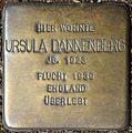 Stolpersteine Krefeld, Ursula Dannenberg (St.-Anton-Straße 97).jpg