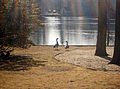 Stony Brook Pond-2.jpg