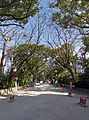 Sumiyoshi shrine , 住吉神社 - panoramio (5).jpg
