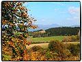 Svrčinník - panoramio.jpg