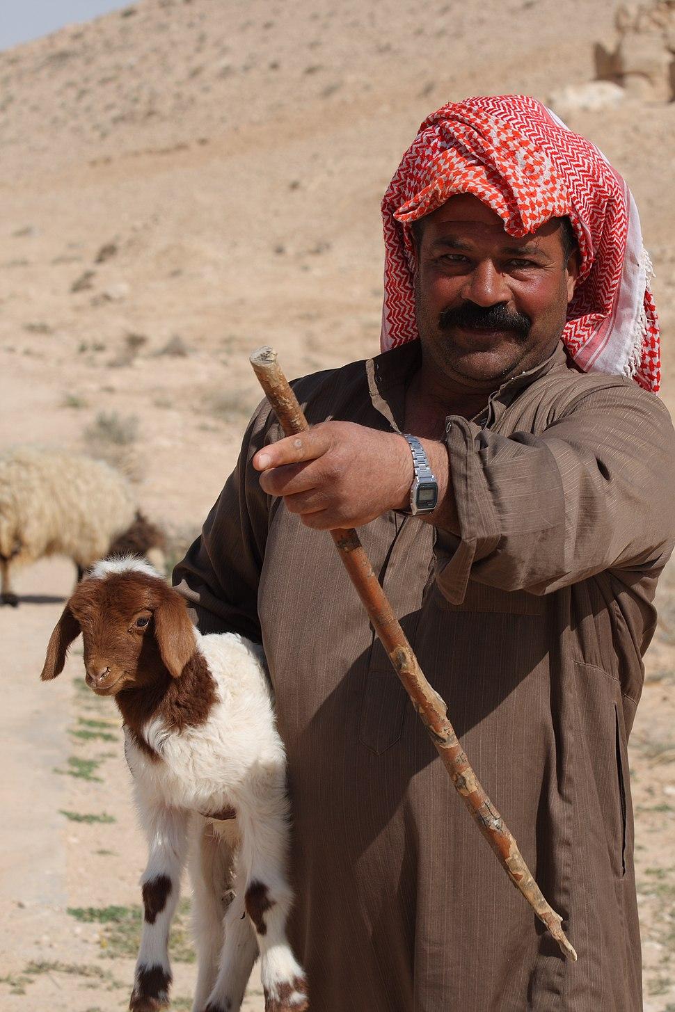 Syrian Bedouin Shepherd