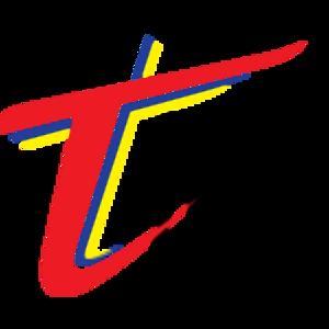 Terengganu F.C. II - Image: T Team F.C. Crest