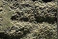 Tanum 225-1 - KMB - 16000300017915.jpg