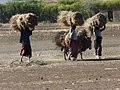 Tanzania07DaresSalaamKaruta065 (4106639720).jpg