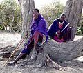 Tanzania1 167 - Flickr - gailhampshire.jpg