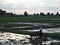 Taungoo, Myanmar (Burma) - panoramio (102).jpg