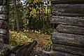 Tenholan linnavuori, Hattula, Finland (48935073542).jpg