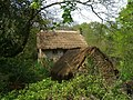 Thatched farm buildings - geograph.org.uk - 411955.jpg