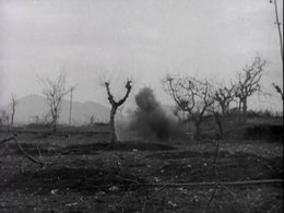 File:The Battle of San Pietro (1945).webm