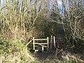 The Coldrum Trail enters Ryarsh Wood - geograph.org.uk - 1165114.jpg