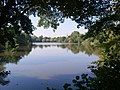 The Lake, South Weald Park - geograph.org.uk - 575404.jpg
