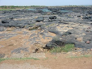 The Niger riverbed in the dry season.jpg
