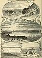 The Pacific tourist (1876) (14758693054).jpg