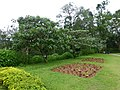 The Queen Sirikit Botanic Garden - Chiang Mai 2013 2494.jpg