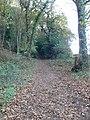 The Sandstone Trail enters Peckforton Woods - geograph.org.uk - 1560267.jpg